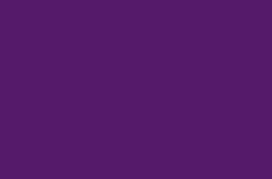 logo delphine delambre violet_Photographe