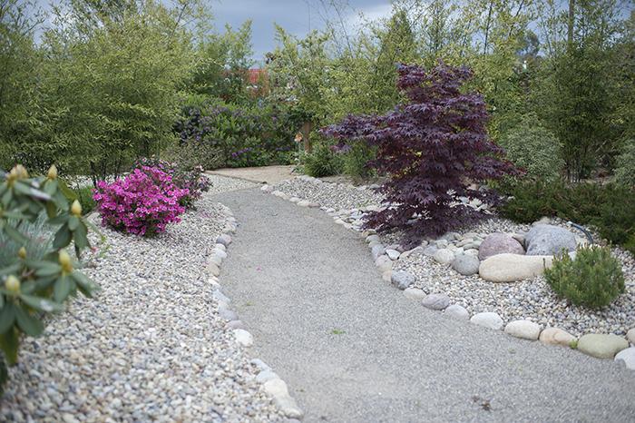 jardin-studio-photo-sylvielezier