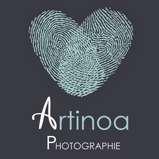 Logo Artinoa