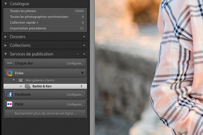 Capture écran du plugin lightroom Evlaa en action