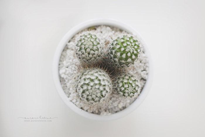 home-studio-aurore-leteve-photographe-bebe-lyon-16