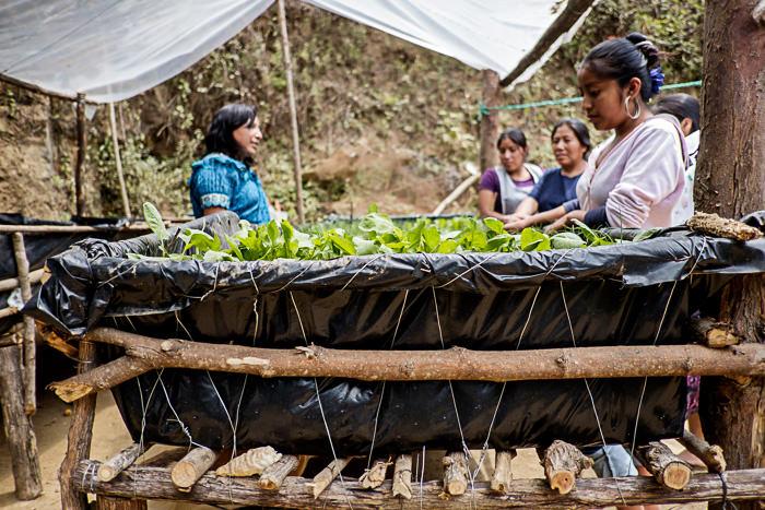 0005-Oxfam-Guatemala-(c) jacques mateos-1788