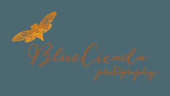 Logo BlueCicada Photography