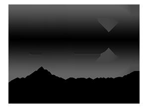Logo du photographe Antoine Dominique
