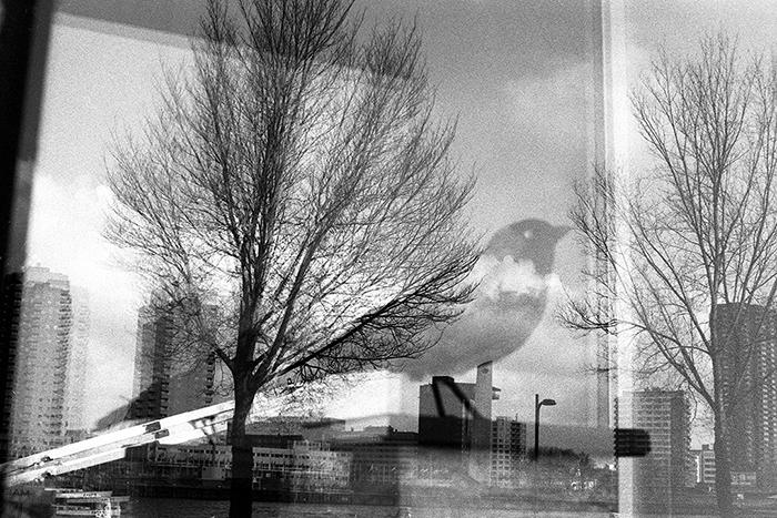 Photo argentique, photo de rue, de Gildas Lepetit-Castel