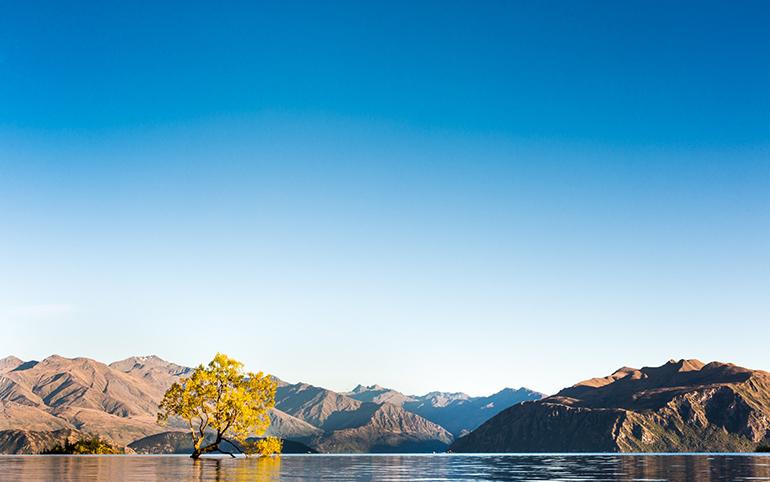 Paysage : La Nouvelle-Zélande : grandiose et magnifique nature.