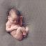 Photographie de nouveau-né, un métier de spécialistes !